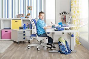 Moll scrivanie ergonomiche